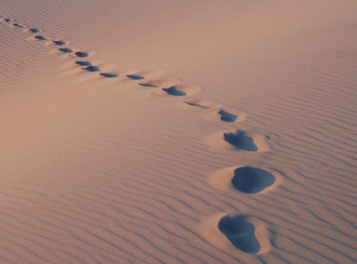 footprints left